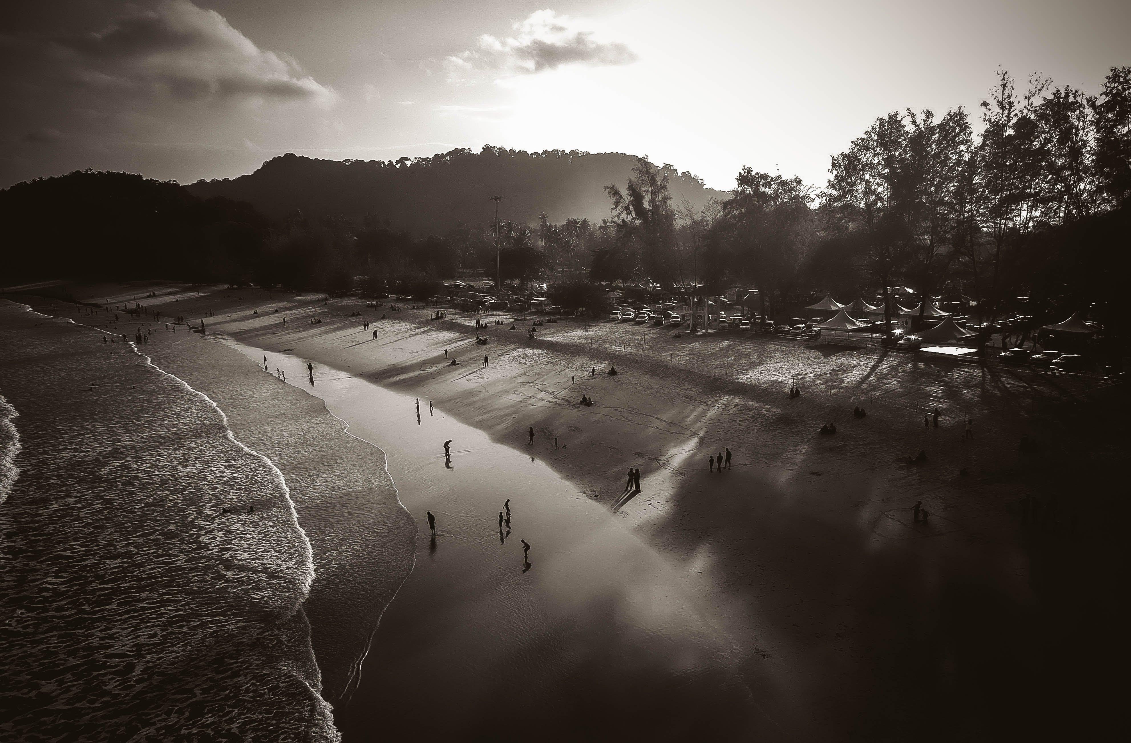 People on Beach Grayscale Photo