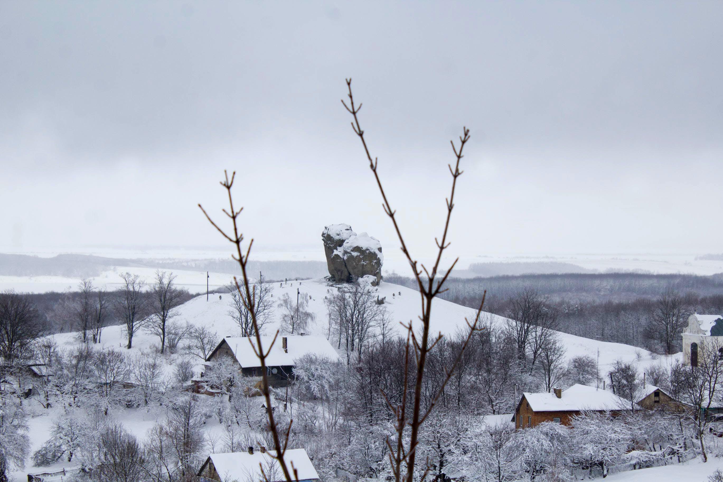 Foto profissional grátis de árvores, casas, céu, coberto de neve