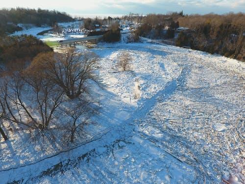 コールド, シーズン, 上から, 冬の無料の写真素材