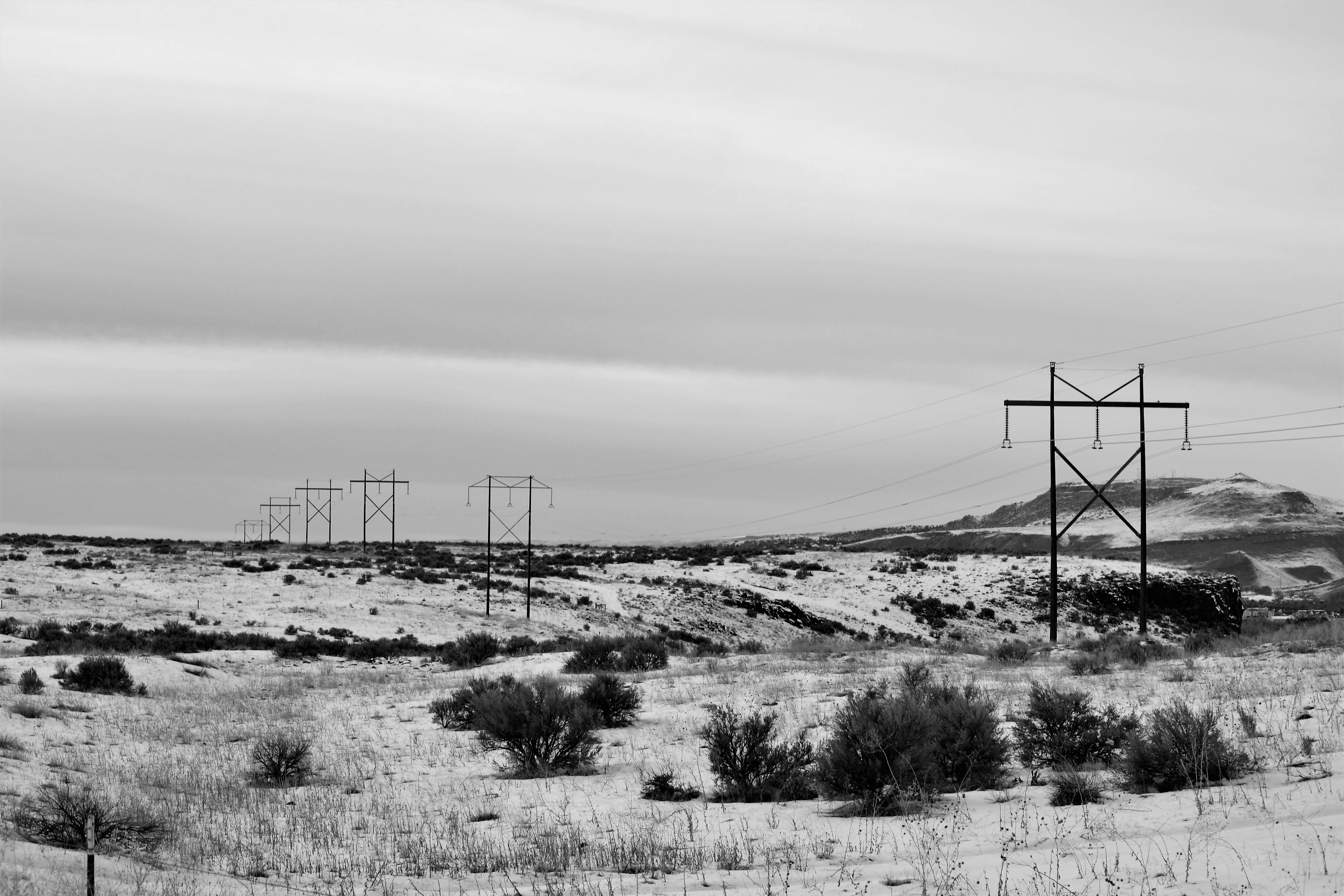 Electric Posts on Dry Field