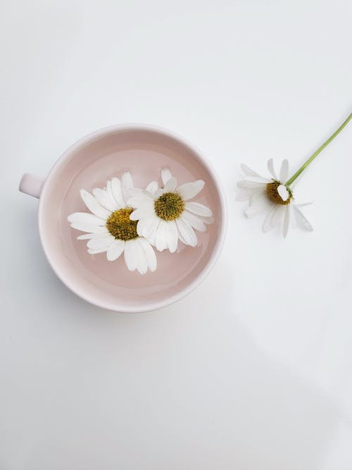 White and Pink Floral Ceramic Teacup With Saucer