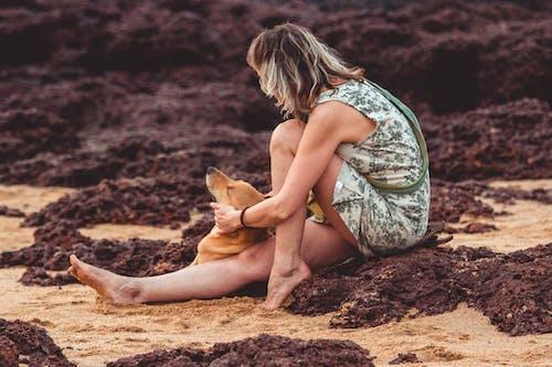 Kostenloses Stock Foto zu fashion, felsen, frau, hund