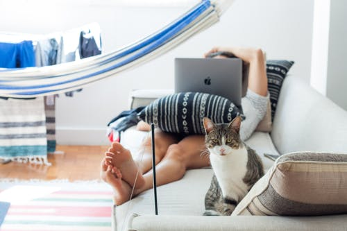 Woman Lying on Sofa With Cat by Her Foot