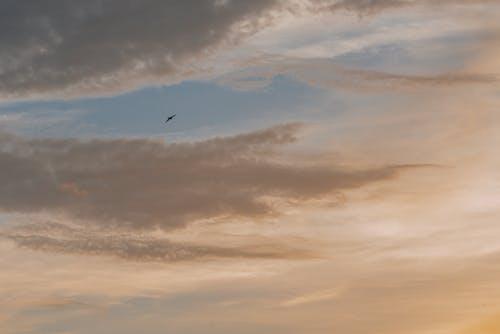 Безкоштовне стокове фото на тему «Захід сонця, мальовничий, небо»