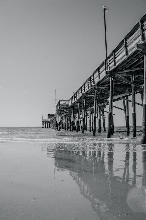다리, 부두, 해변의 무료 스톡 사진