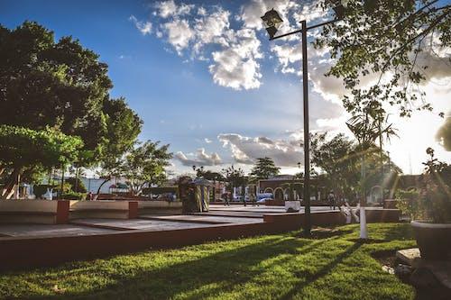 人, 光, 公園, 城市 的 免费素材照片