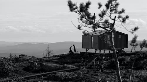 Grayscale Photo of Man Sitting on Rock Near Tree