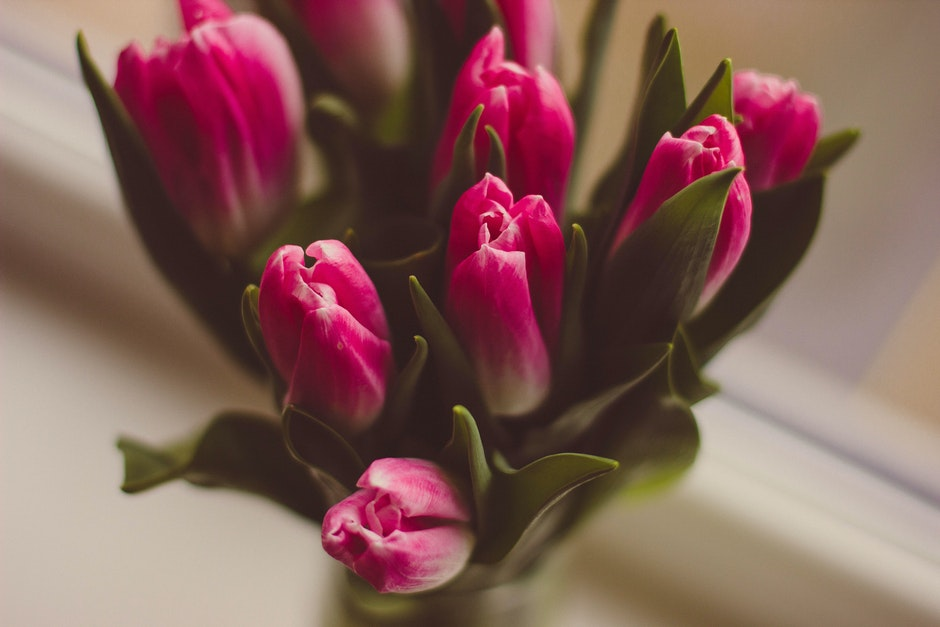 decorative, flora, flower vase