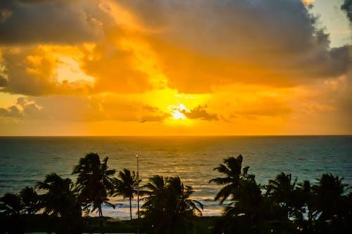 Free stock photo of beach, golden sun, morning sun, ocean