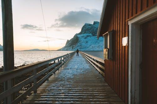 人, 寧靜, 挪威, 水 的 免費圖庫相片