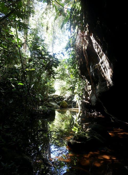 Foto profissional grátis de adega, caverna, enseada
