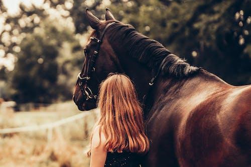 Foto profissional grátis de amante dos animais, amazona, amizade