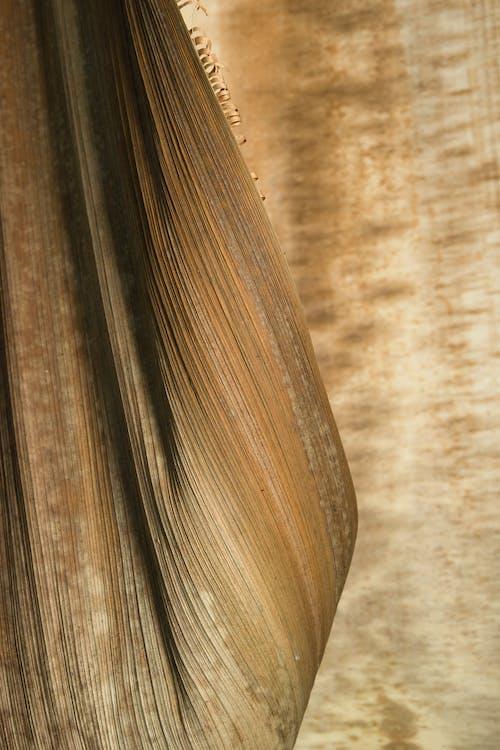 Brown and Black Stripe Textile