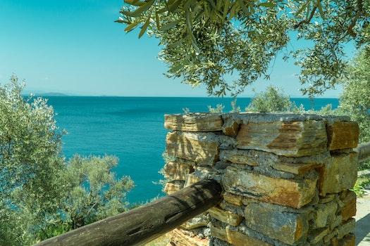 Free stock photo of wood, sea, landscape, nature