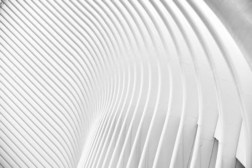 Základová fotografie zdarma na téma architektura, bílá, čáry, černobílá