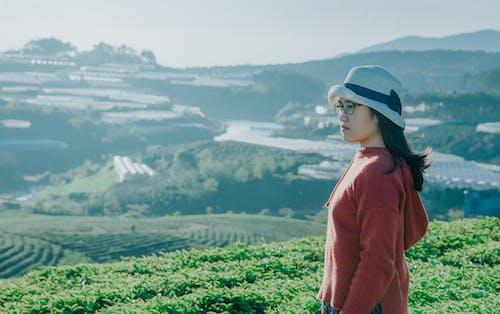 Foto stok gratis bagus, bidang, kaum wanita, lahan pertanian