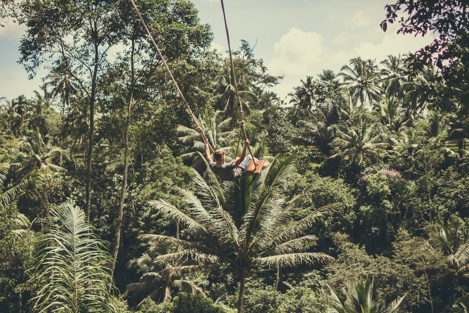 Man Holding on Rope in Forest