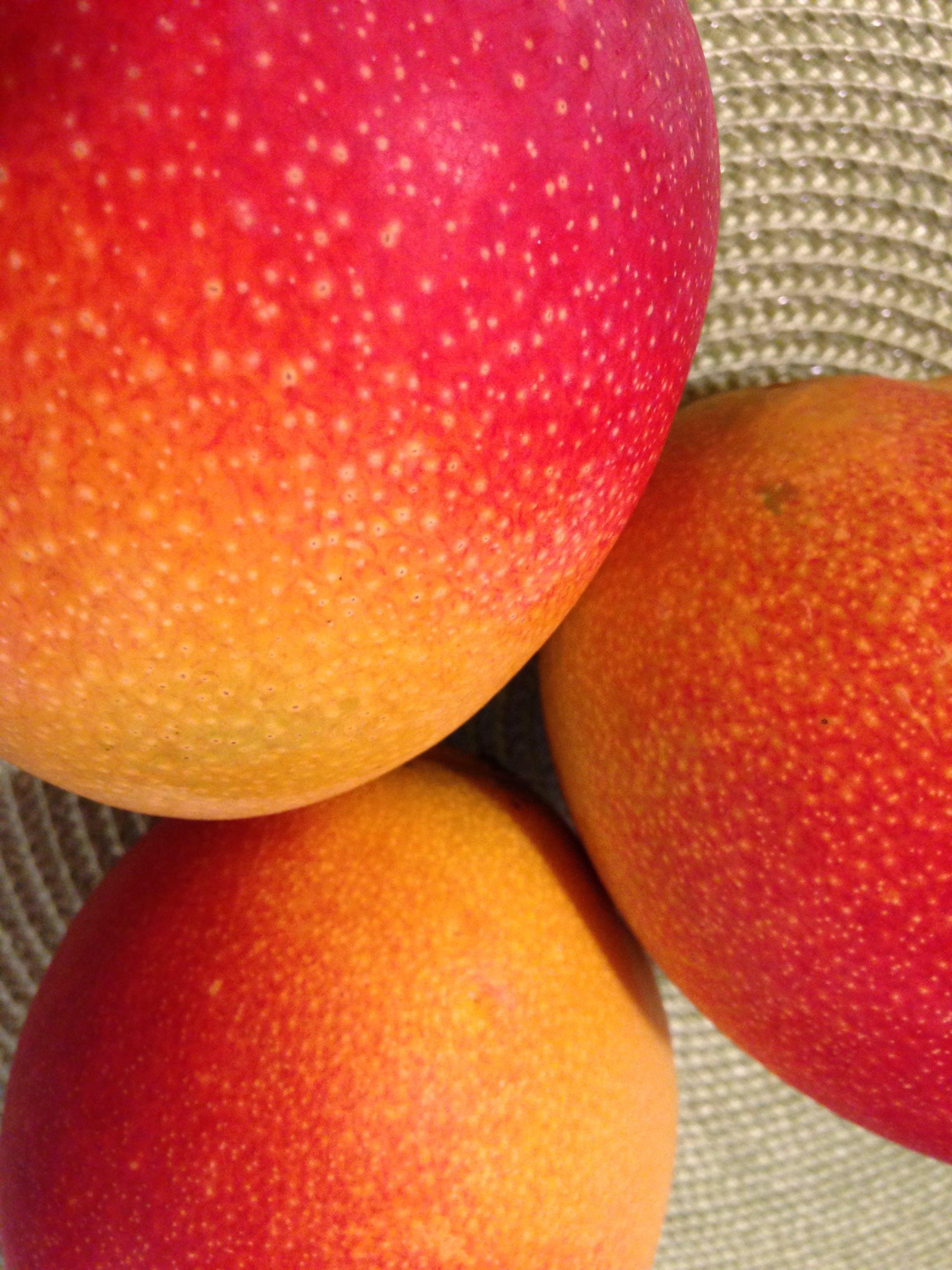 Kostenloses Stock Foto zu mangos