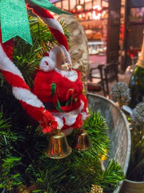 Imagine de stoc gratuită din bar, clopot, concert, Crăciun
