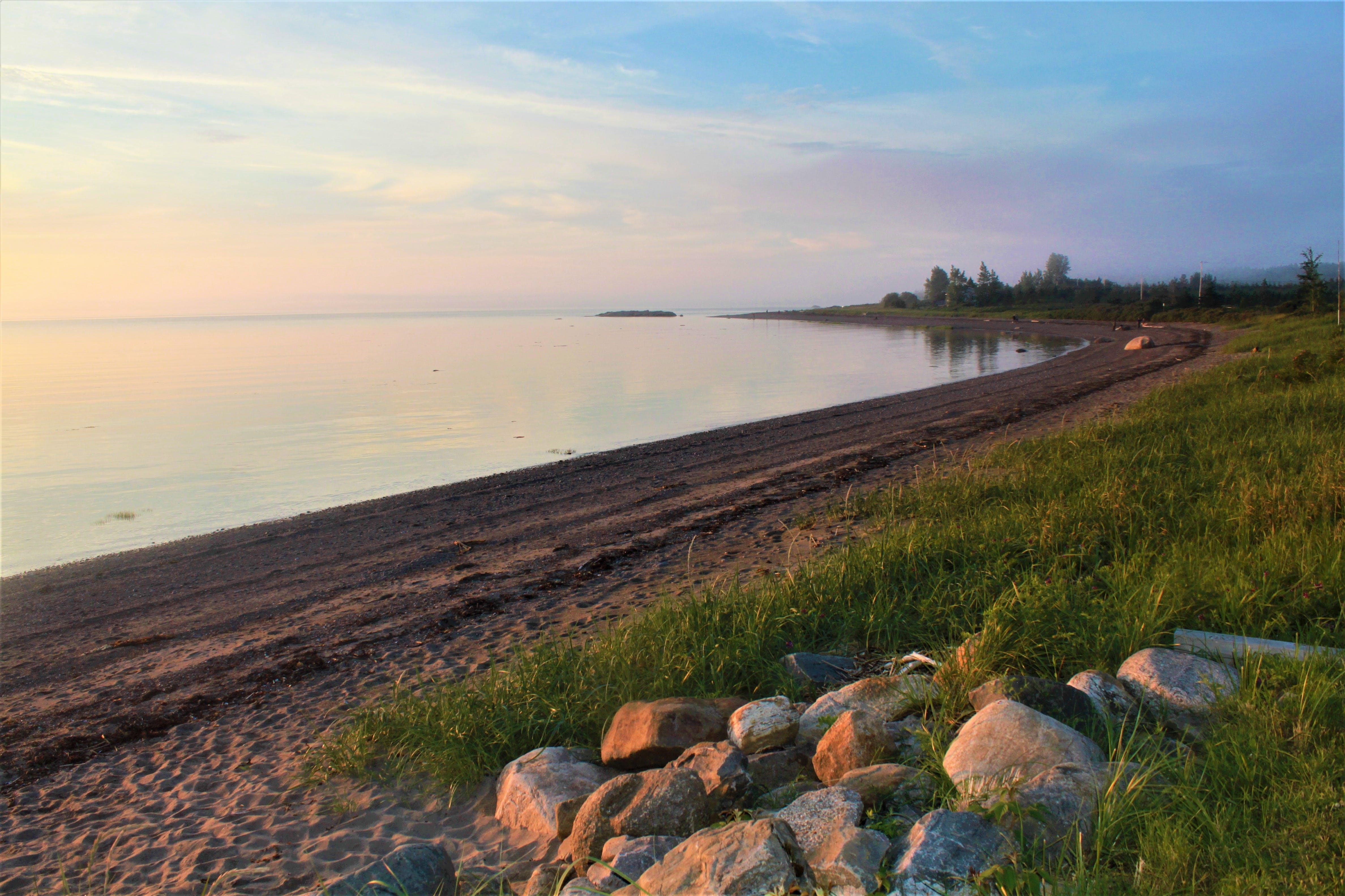Free stock photo of beach, nature, nature photography, nature wallpaper