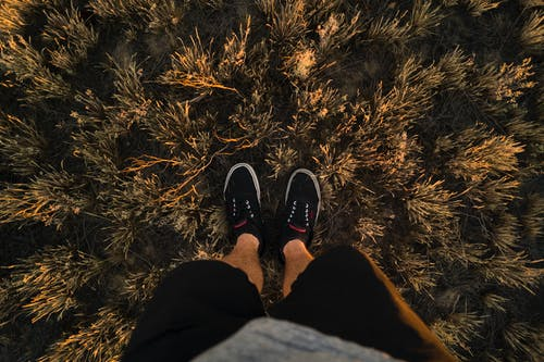 Foto profissional grátis de calçados, grama, homem, pernas