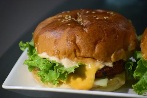 Free stock photo of beef burger, burger, burgers