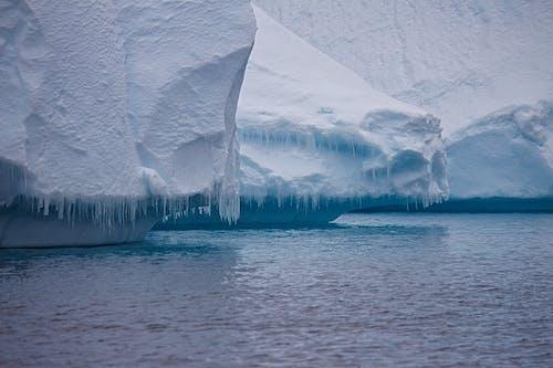 Foto profissional grátis de água, com frio, congelado, dia