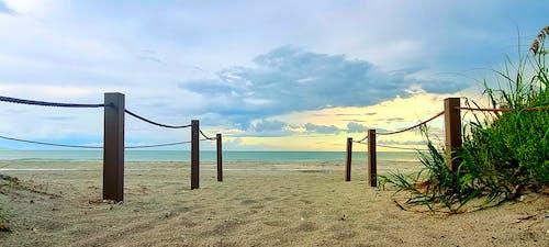 Immagine gratuita di natura forestale, sabbia, sabbia della spiaggia