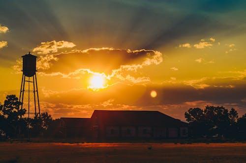 Kostenloses Stock Foto zu dämmerung, himmel, hinterleuchtet, silhouette