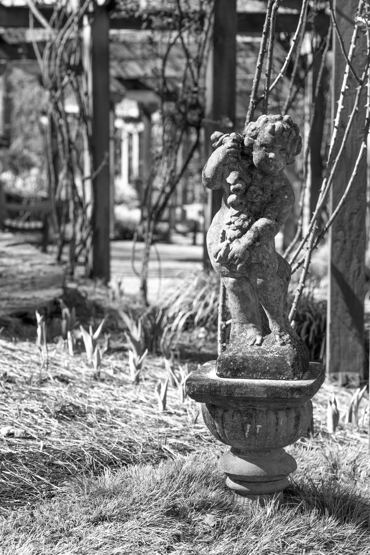Free stock photo of arbor, black and white, garden, statue