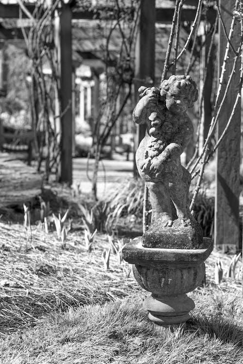 Δωρεάν στοκ φωτογραφιών με άγαλμα, ασπρόμαυρο, κήπος, κληματαριά