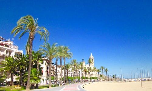 Free stock photo of beach, church, palm trees, spain