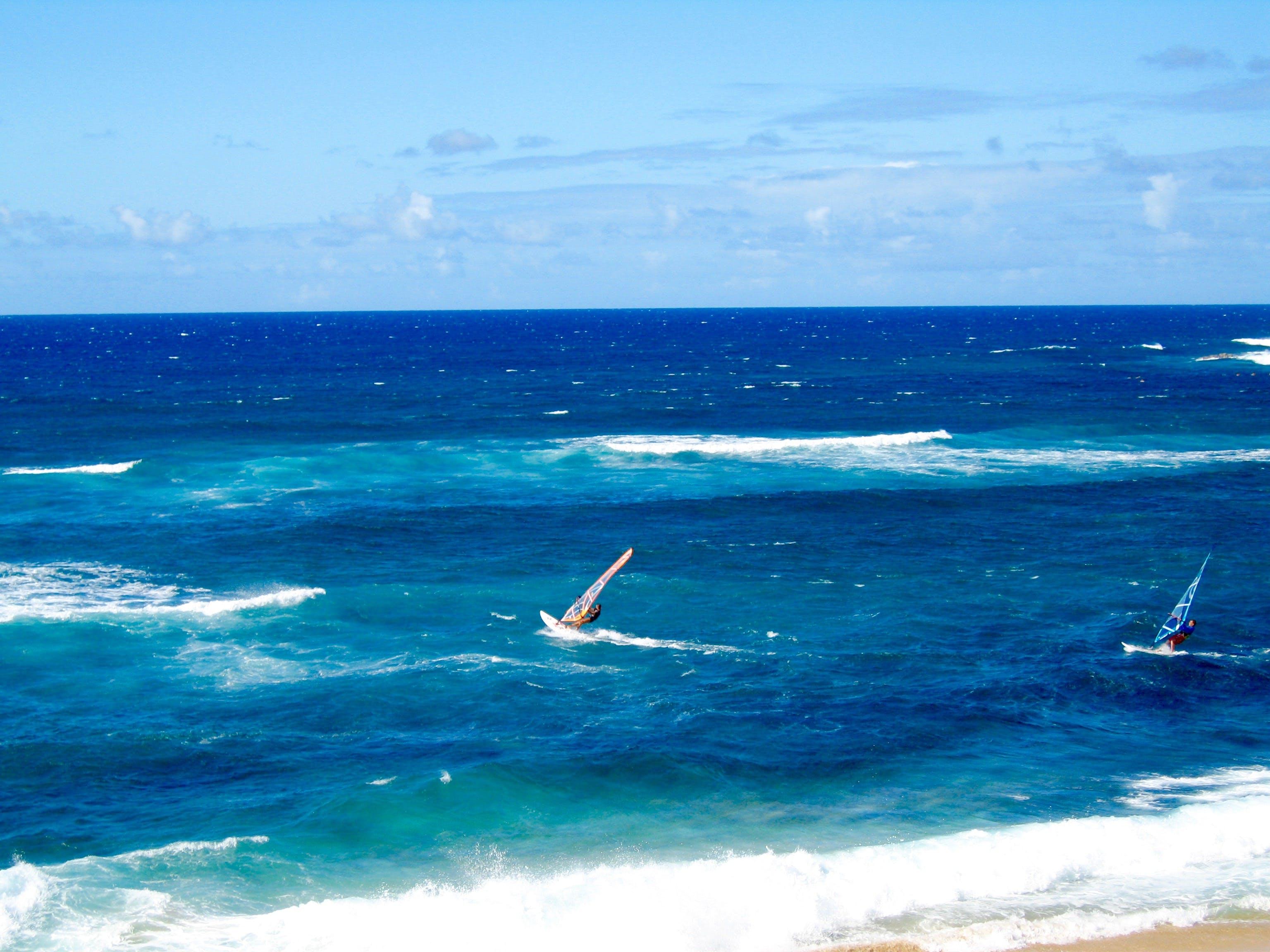 Free stock photo of hawaii, windsurfing