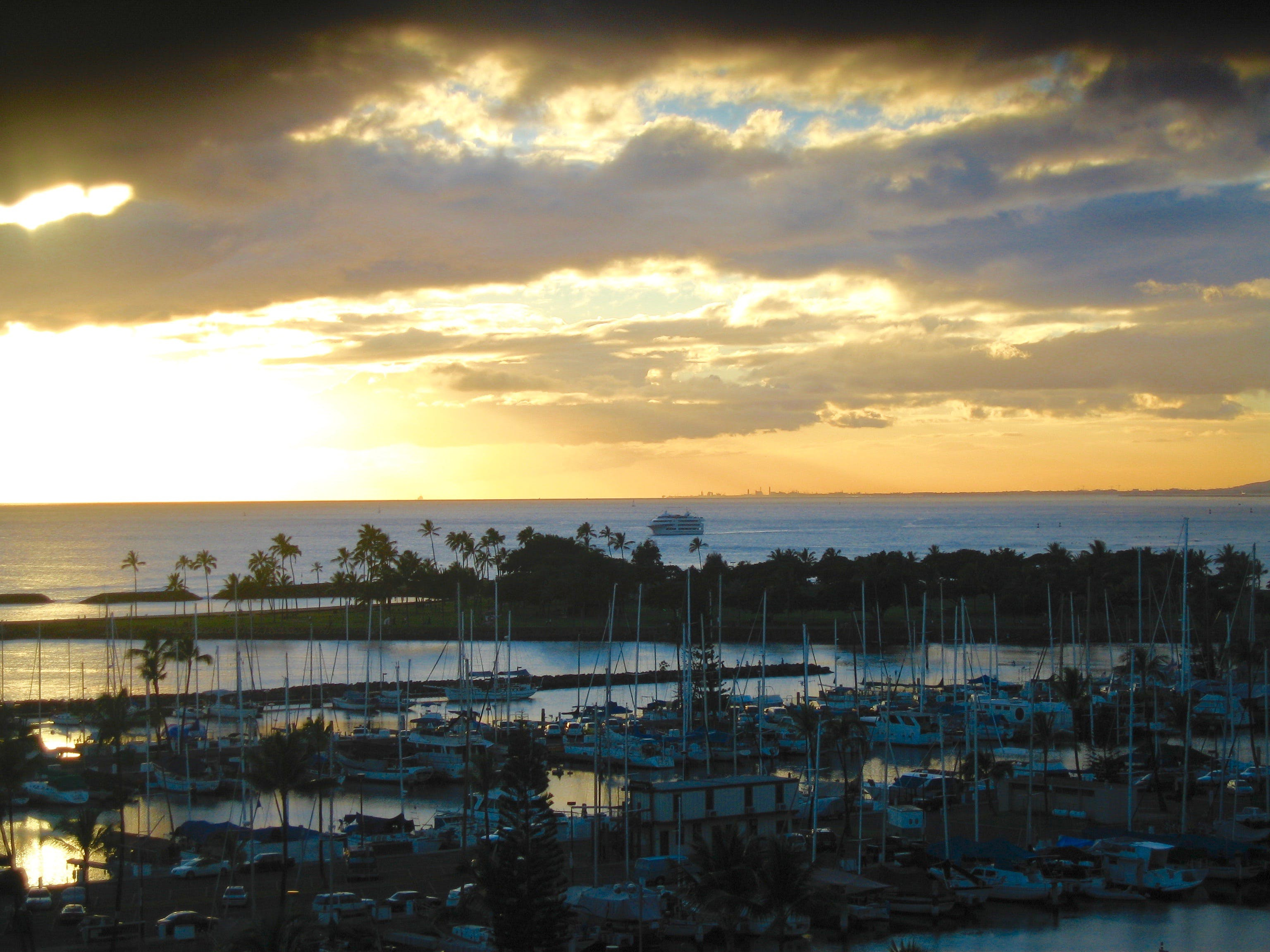 Free stock photo of marina, palm trees, sail, sailboat