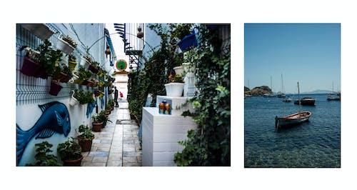 Fotos de stock gratuitas de barca, bodrum, mar, pavo