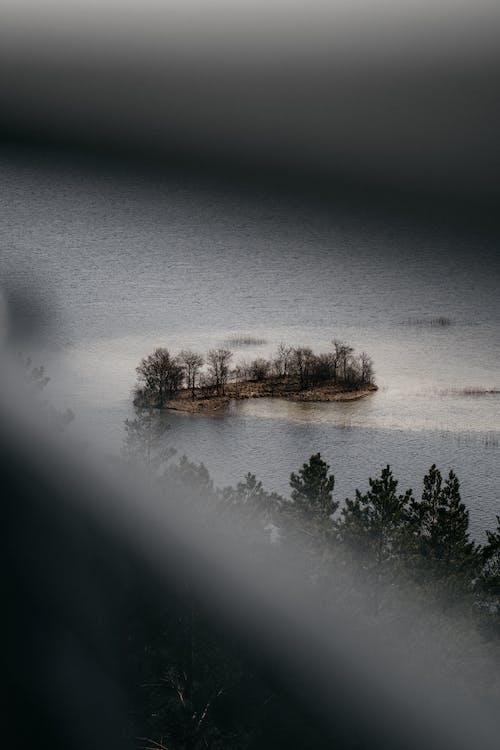 光, 光線, 冬季 的 免费素材图片