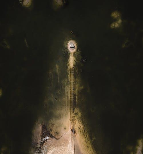 H2O, 人, 光 的 免费素材图片