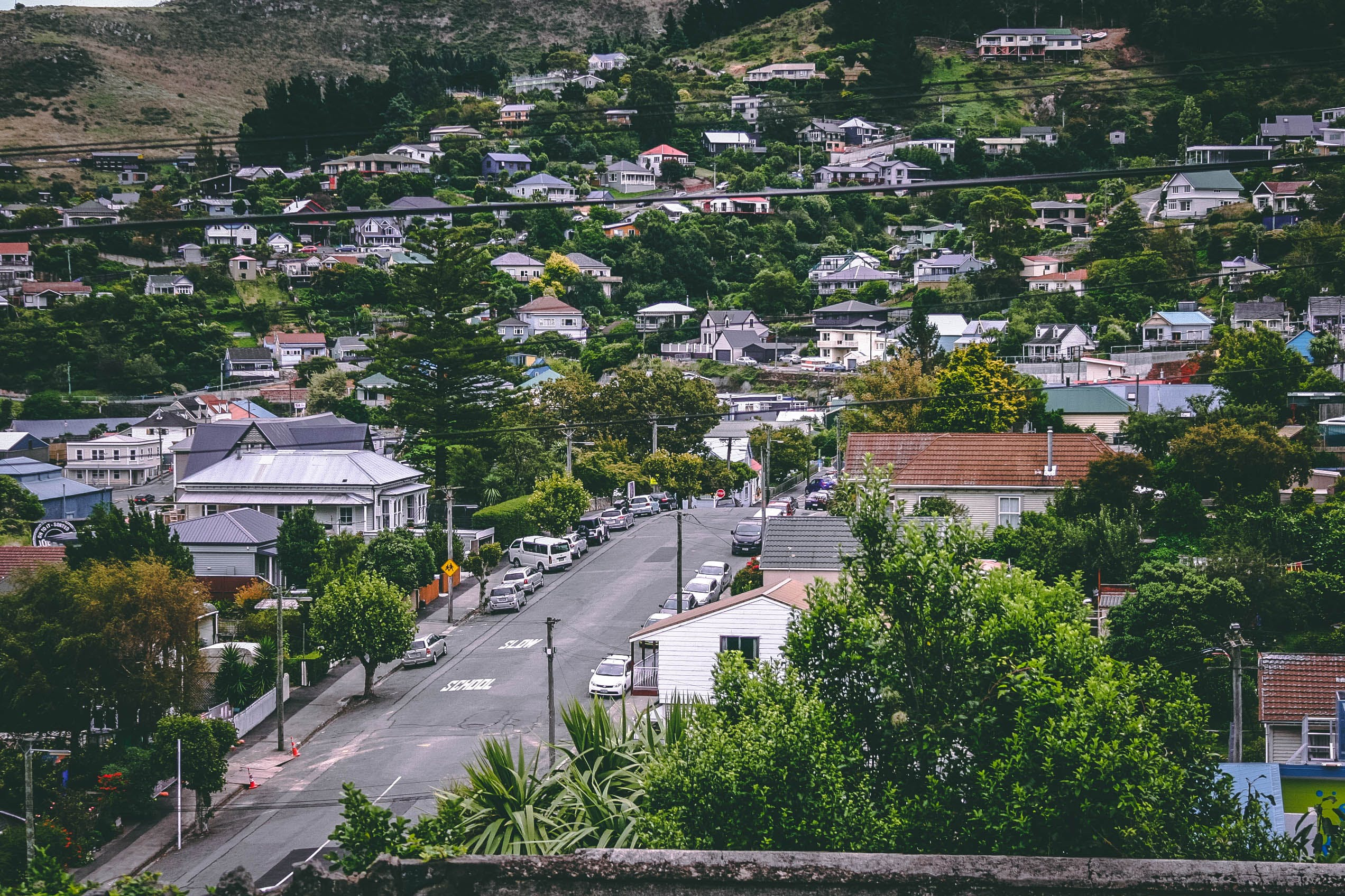 Birds Eye View Photography of Cars on Street Between Houses