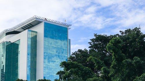 Ingyenes stockfotó ablak, belváros, építészet témában