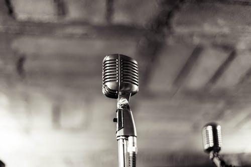 Fotobanka sbezplatnými fotkami na tému audio, čierny abiely, hudba, hudobná skupina