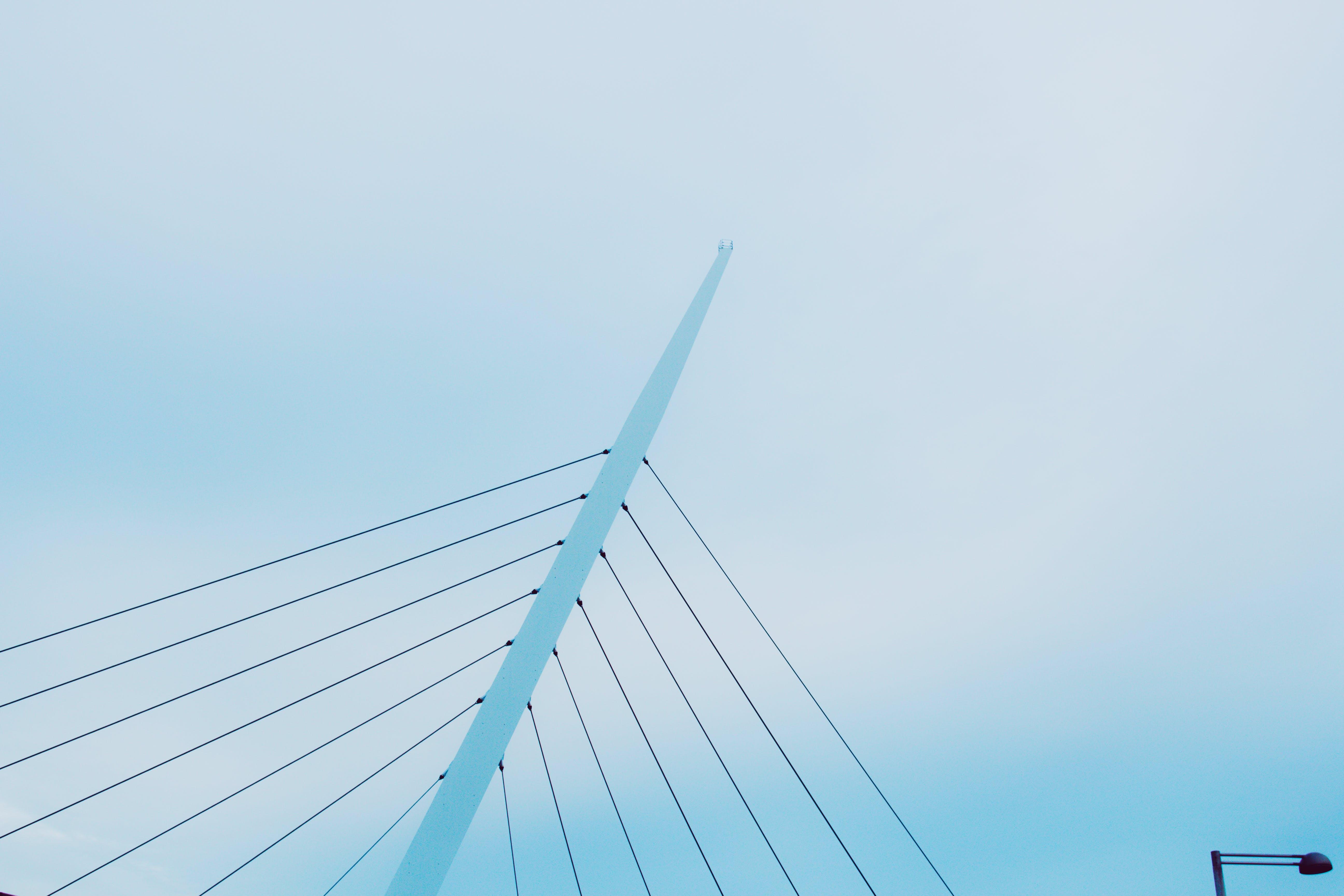 blue sky, daylight, low angle shot