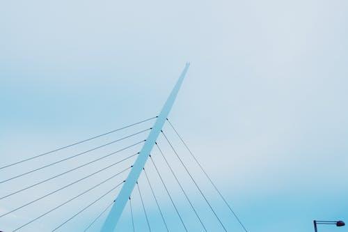 Darmowe zdjęcie z galerii z błękitne niebo, niebo, perspektywa żabia, przewody