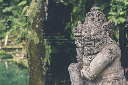 上帝, 亞洲, 信仰, 印度教 的 免费素材照片