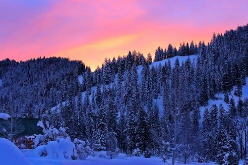 Kostnadsfri bild av bergen, idaho, snö, soluppgång