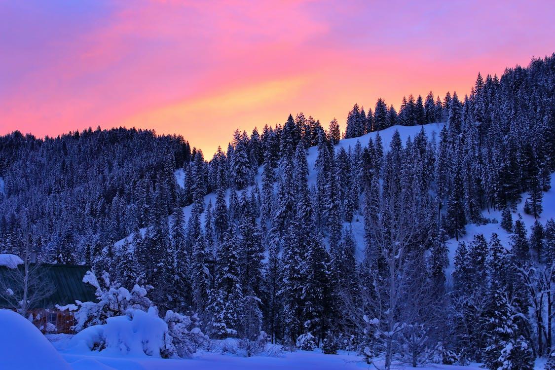 bergen, idaho, snö