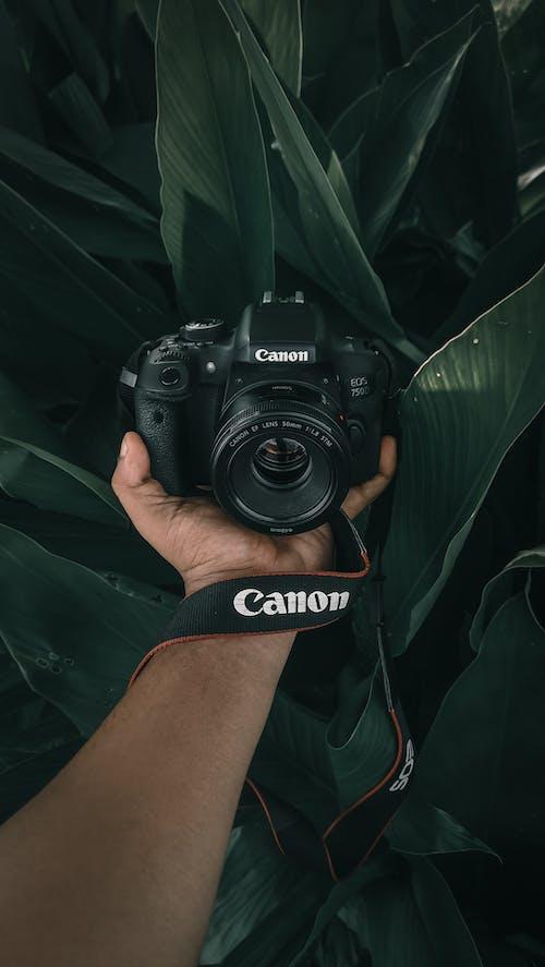 Black Canon Dslr Camera on Person's Hand
