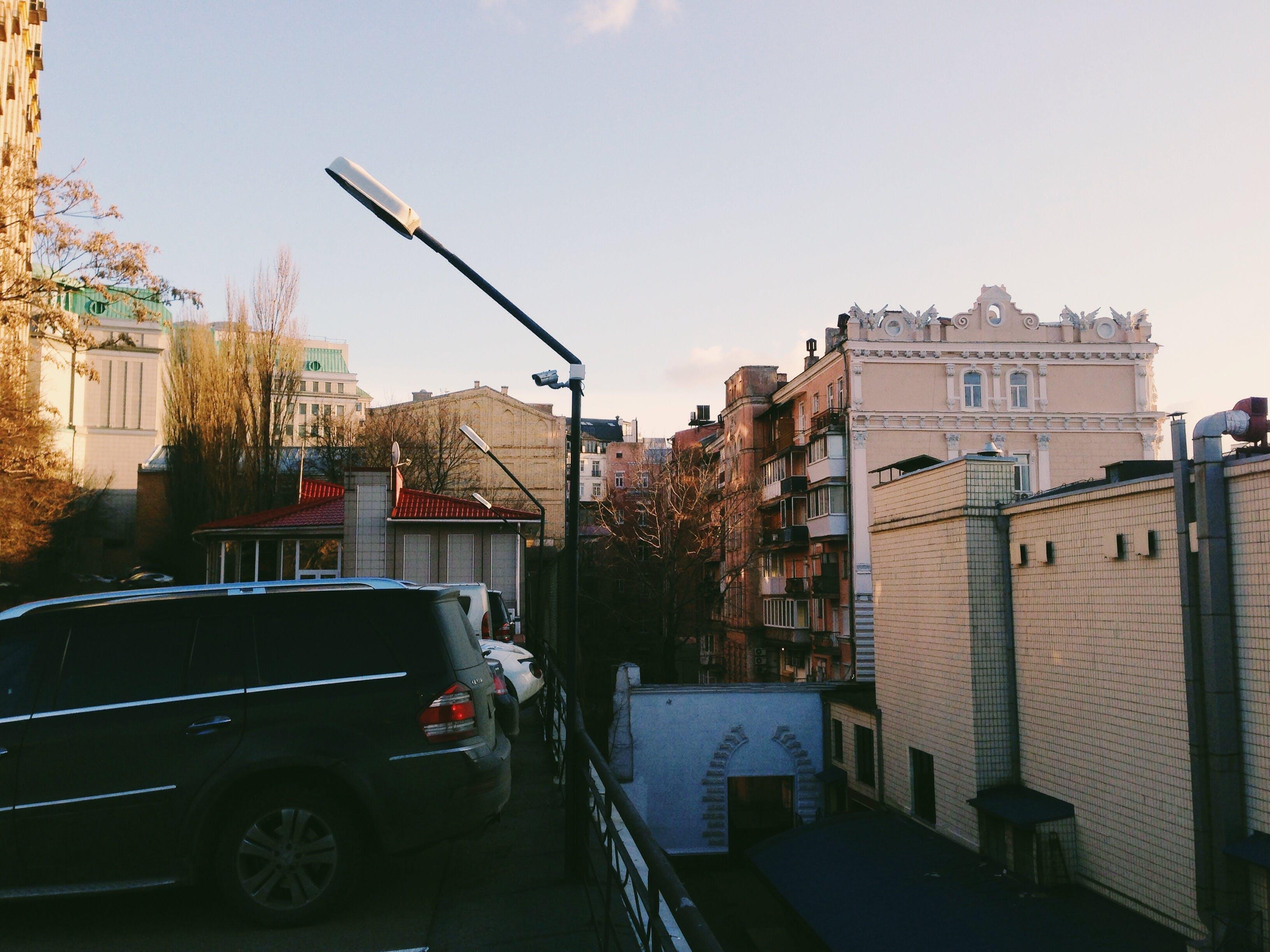 Free stock photo of city, sunny