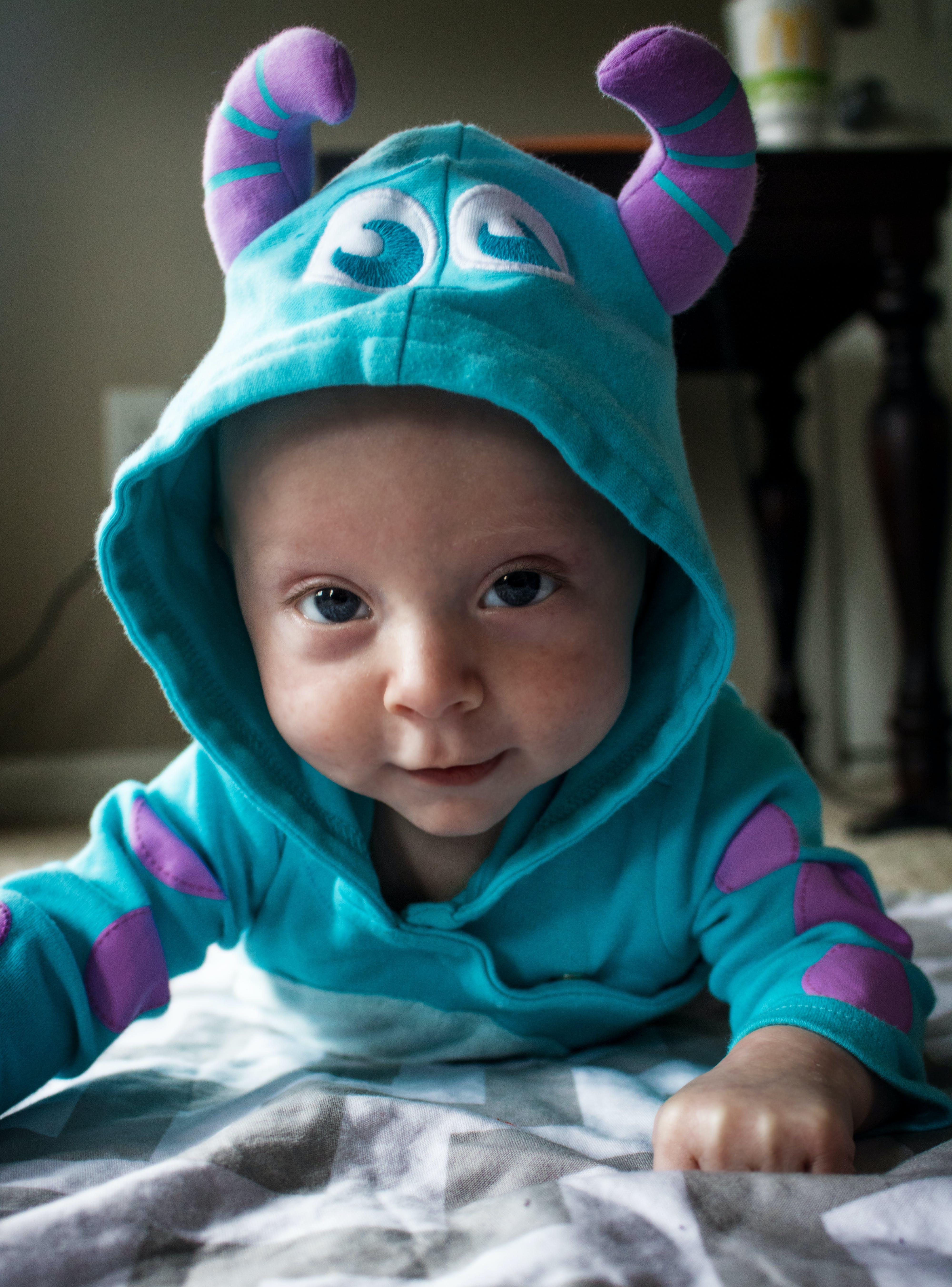 Free stock photo of cute, eyes, sweet, monster