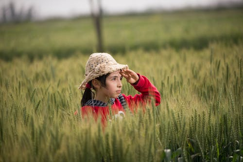 ファーム, フィールド, 女の子, 子の無料の写真素材