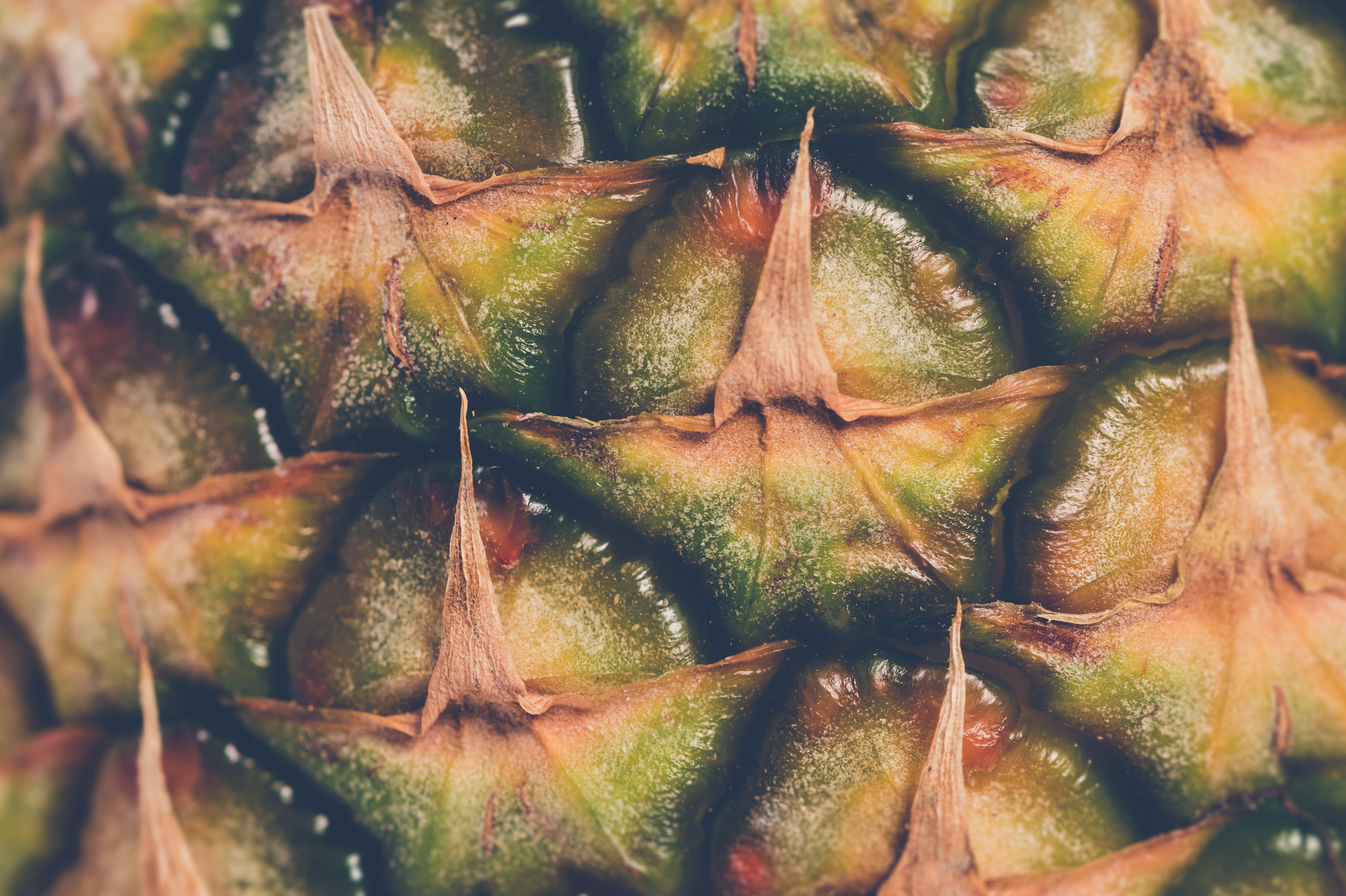 Green Pineapple